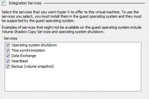Disable integration services in hyperV